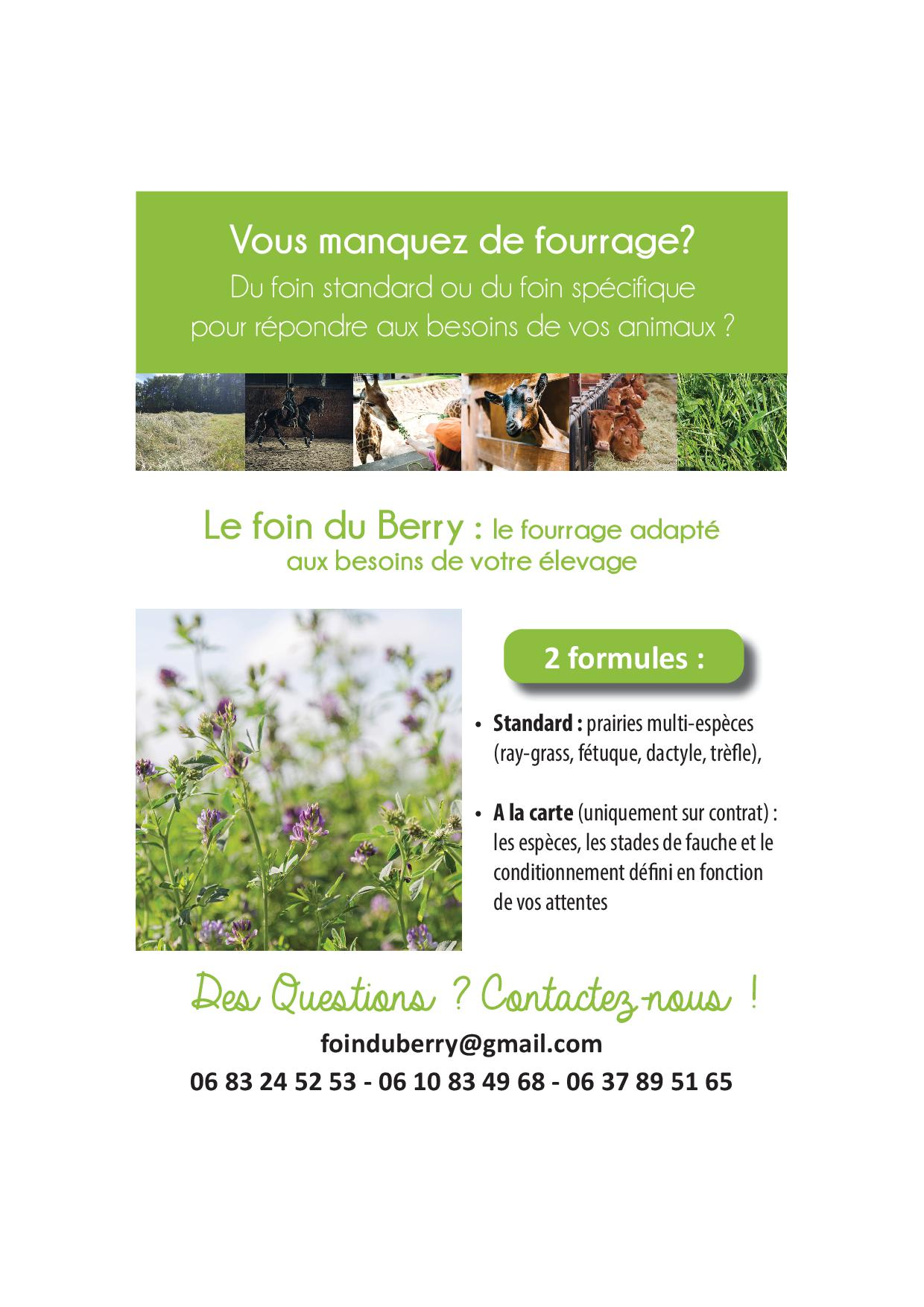 flyer foin du berry